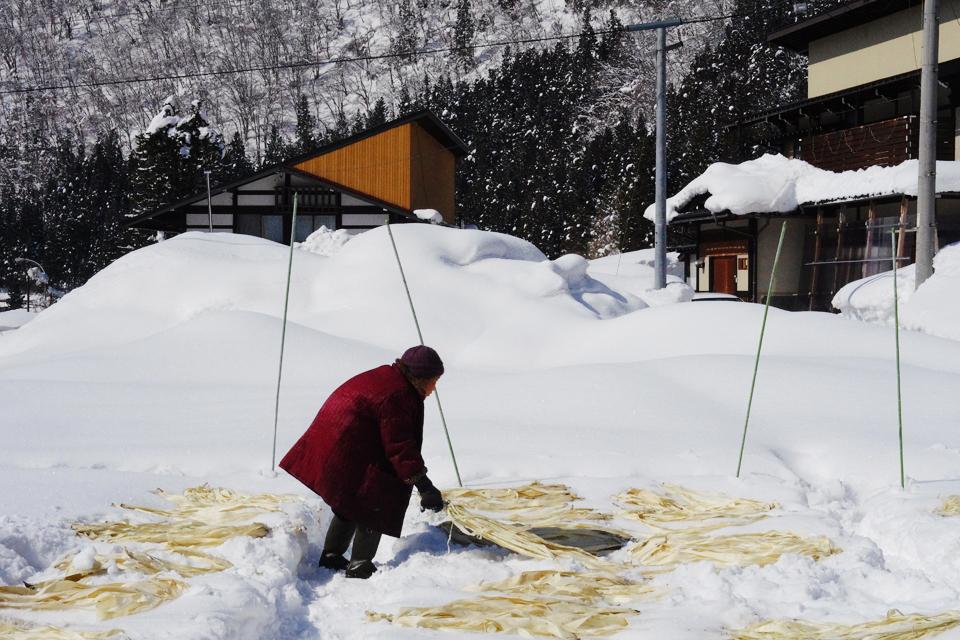 飛騨の山奥でつくられていることから名付けられた「山中和紙」。 柏木さんというおばあちゃんが作っています。 「こうぞの雪ざらし」という手法の名前があるように、 和紙の原料になっている樹木「こうぞ」を、2m近く降り積もった雪のベッドに並べていきます。 こうぞを雪にさらすと、雪や太陽の力で、茶色だった皮がだんだんと 自然漂白されるんだそうです。最後にはほぼ真っ白に。 よくよく聞いたら、なんとその場所はもともと畑だそうで驚きました。 800年も前から始まった和紙作りですが、いまでは柏木さんと もう一つの工房の2軒だけなのだとか。 自然の力を借りていながらも、毎年こうして和紙作りが 伝統工芸として受け継がれていることに感動しました。(田辺)